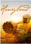 [ANNULLATO] La giornata mondiale delle api